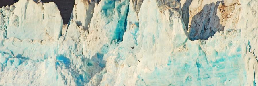 Wojtek – żeglarz polarny.  Morze Arktyczne 15.07 – 05.08  2010r.